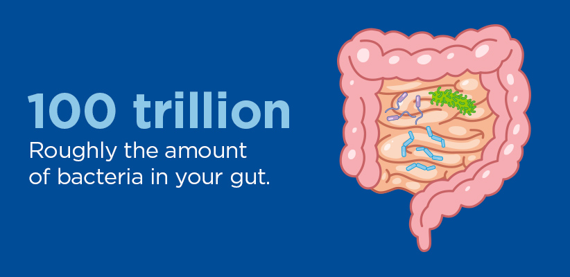 100 trillion: Roughly the amount of bacteria in your gut.